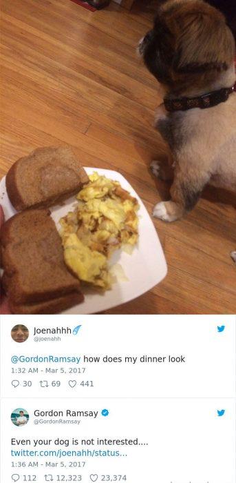 tuit comida