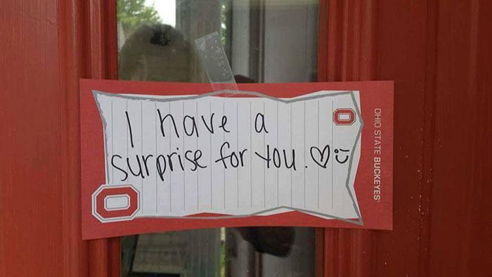 sorpresa novia