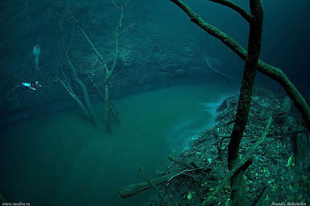 rio cenote
