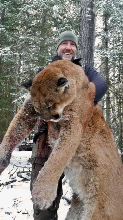cazador leon