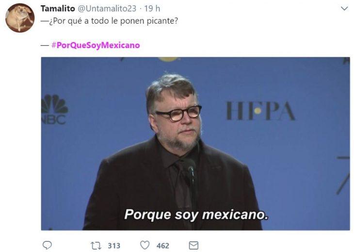 porque soy mexicano 9