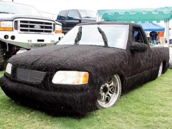 carro peludo