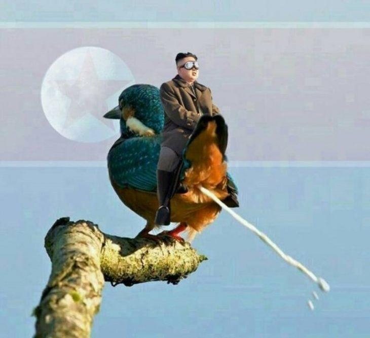 Batalla de Photoshop con pájaro
