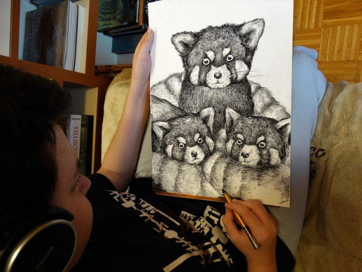Dušan Krtolica dibuja mapaches