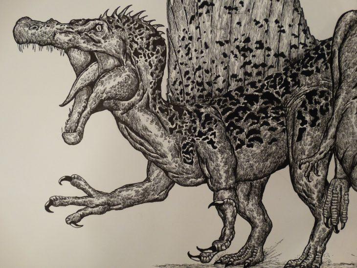 Dušan Krtolica dibujo dinosaurio