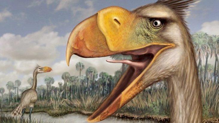 Ave prehistórica