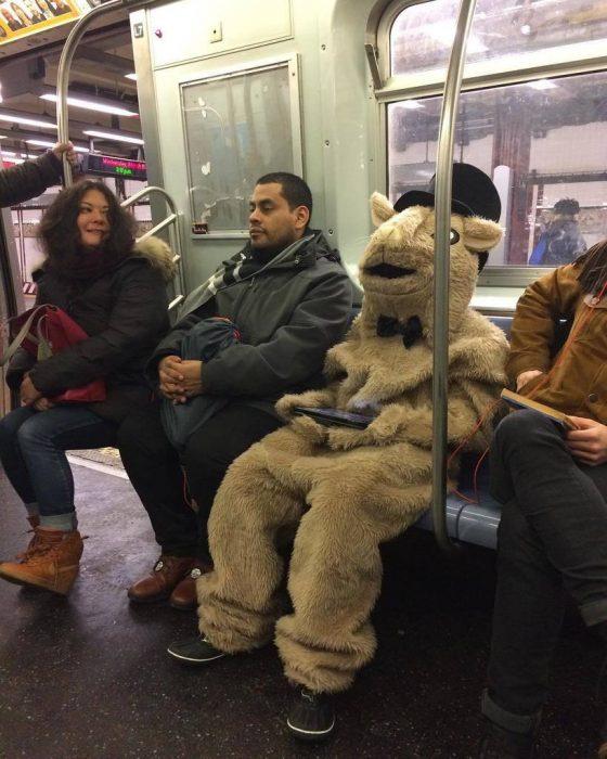 disfraz de oveja en el metro