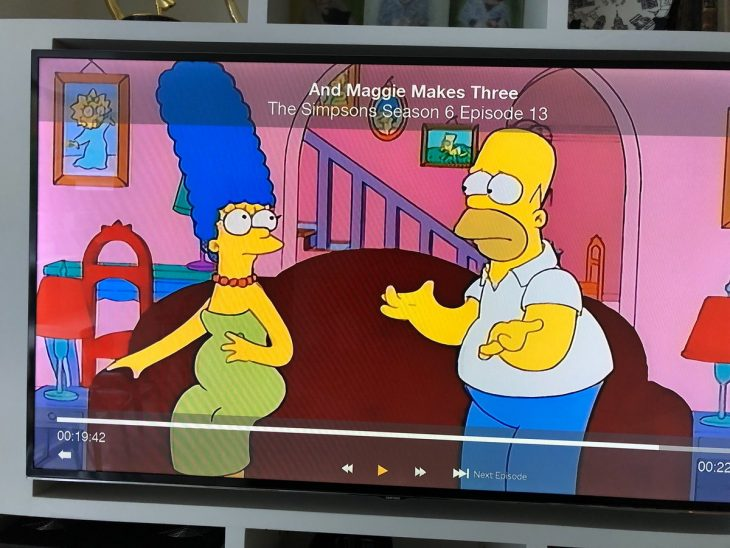 homero y marge error