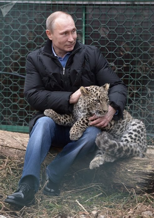 calendario Putin leopardo