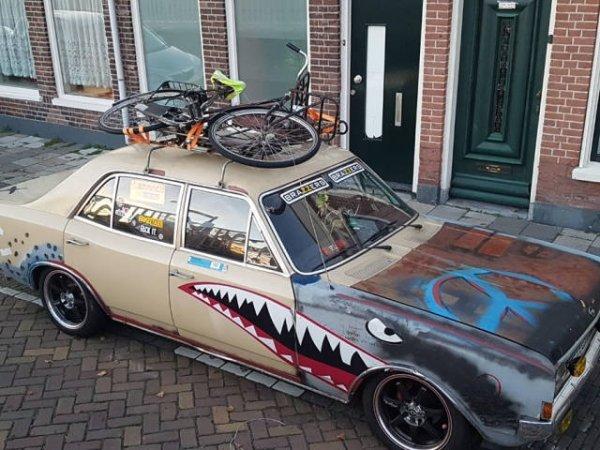 autos feos tiburón