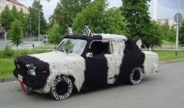 autos feos vaca