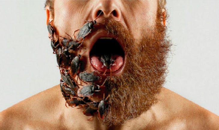 Barba con cucarachas