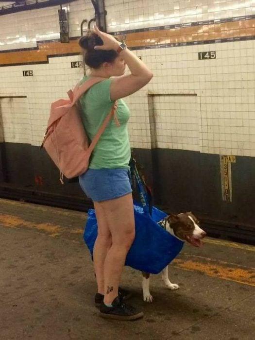 gente extraña metro perro