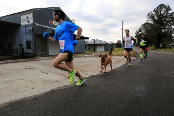 perro corre maratón