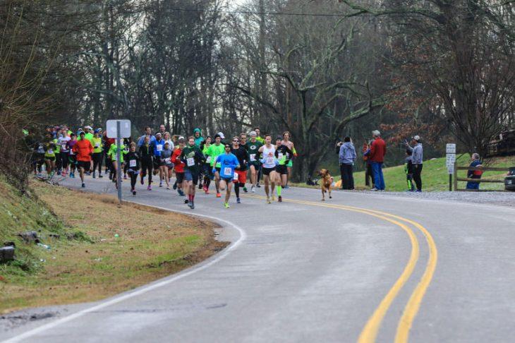 perro corre medio maratón