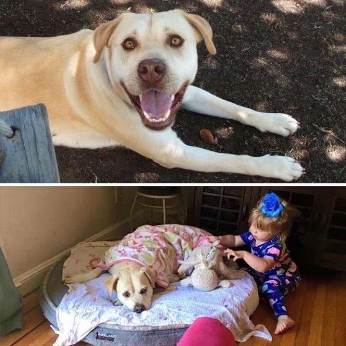 Antes y después de ser padres