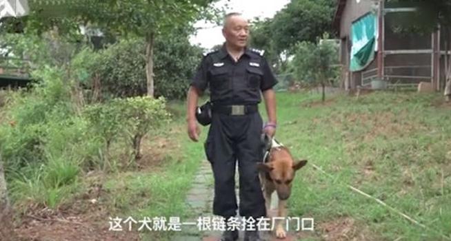 hombre crea refugio perros policía