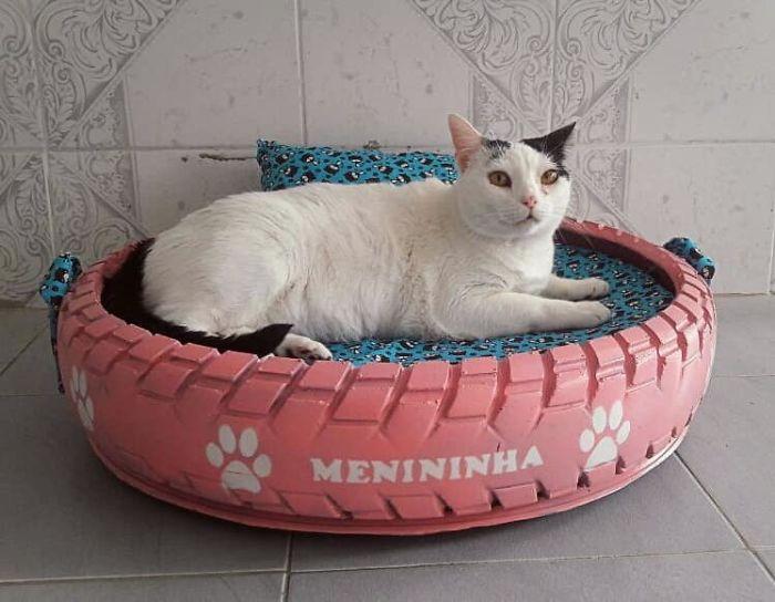 Recicla llantas viejas para hacer camas para animalitos de la calle