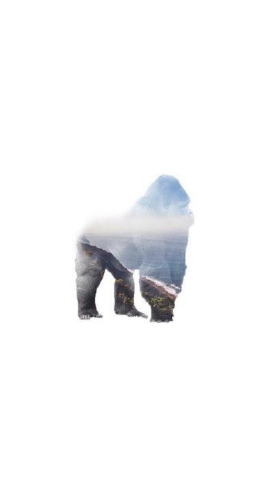 Fondos de pantalla gorila