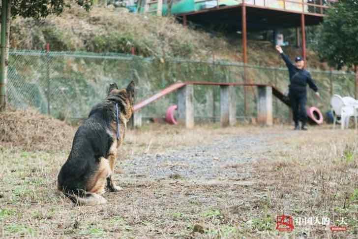 refugio perros expolicias