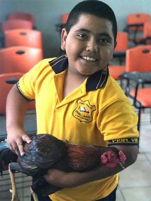 Niño con gallo