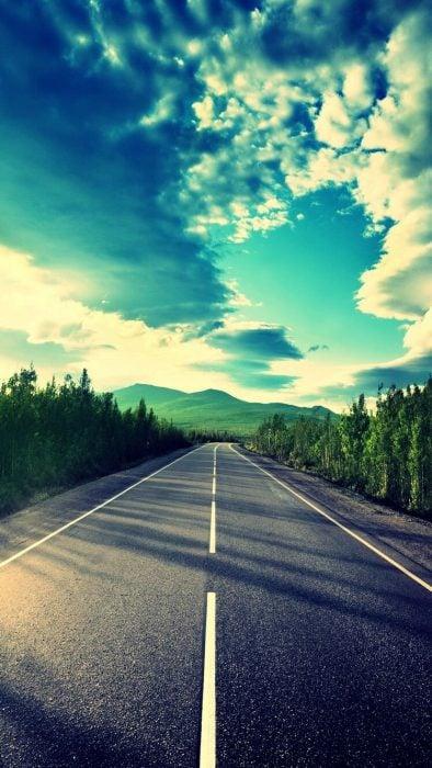 Fondos de pantalla naturaleza camino verde