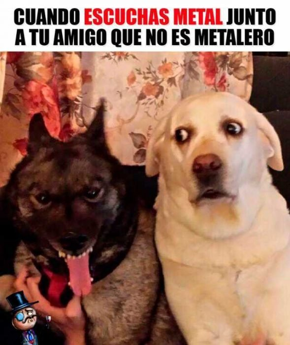 metal meme laguiadelvaron
