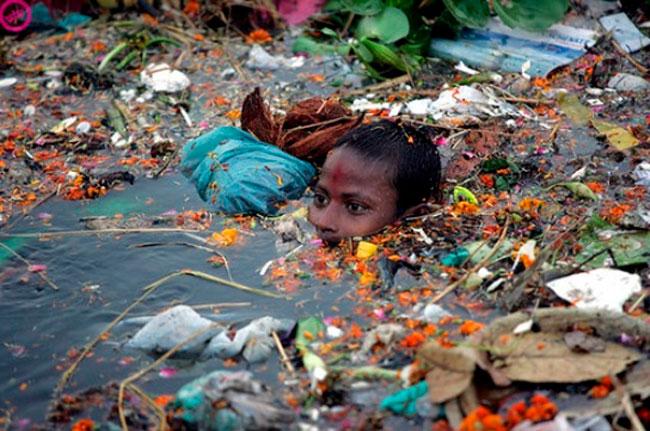 Imágenes impactantes del medio ambiente