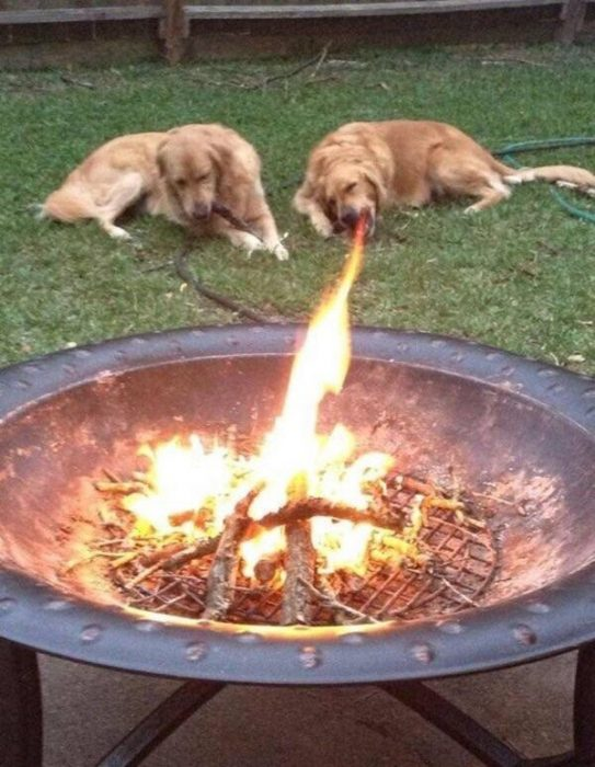 Imágenes de extrañas coincidencias fuego