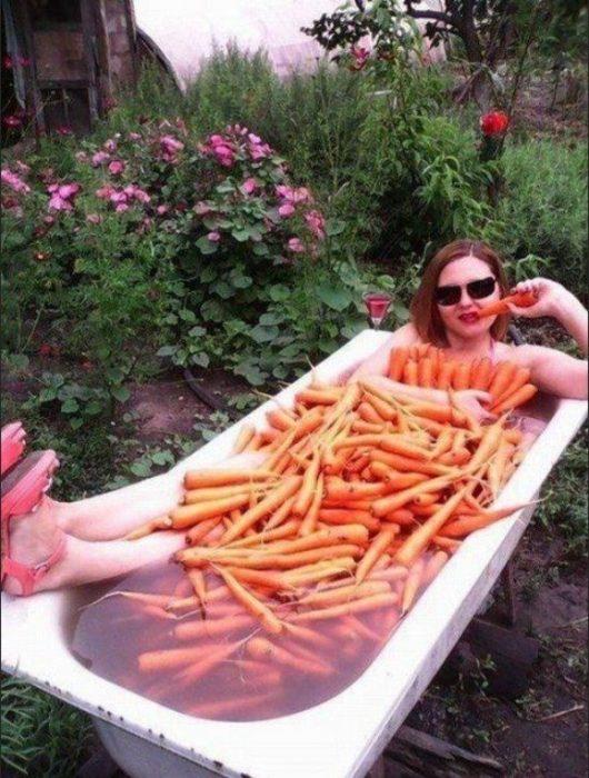 imágenes sin sentido tina zanahoria