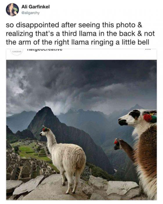 imagenes engañosas