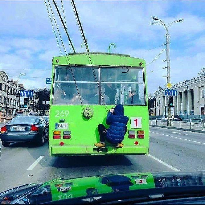 rarezas transporte