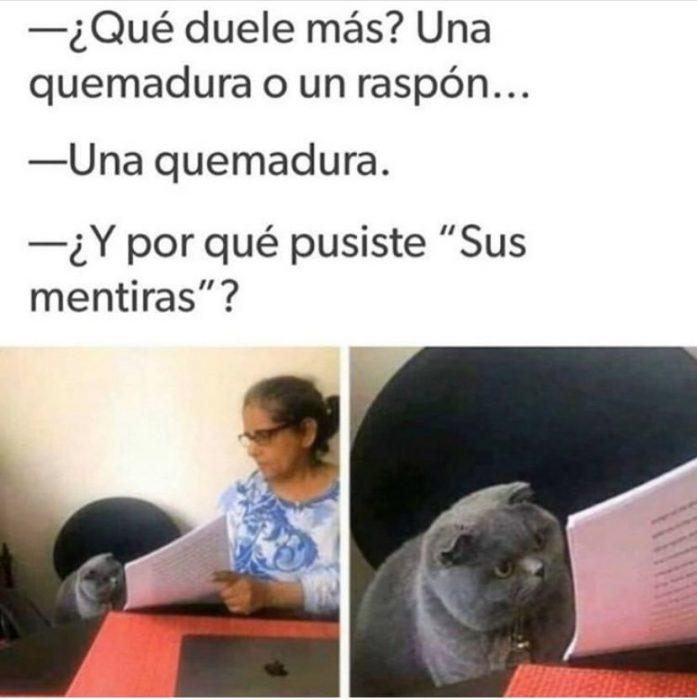 memes 2019