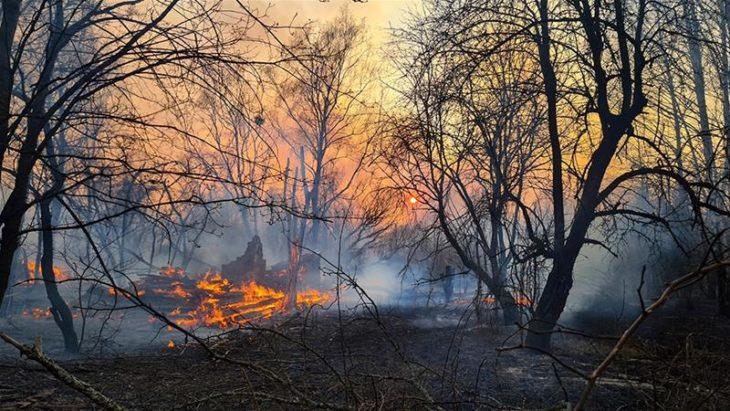 Incendios de Chernobyl