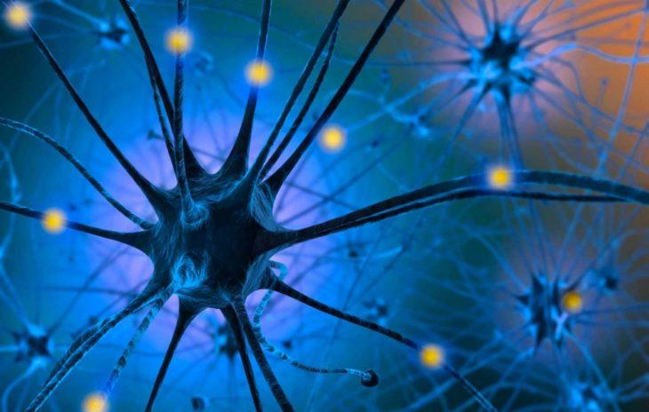 neurotransmisor serotonina