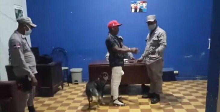 perro intercede por el dueño