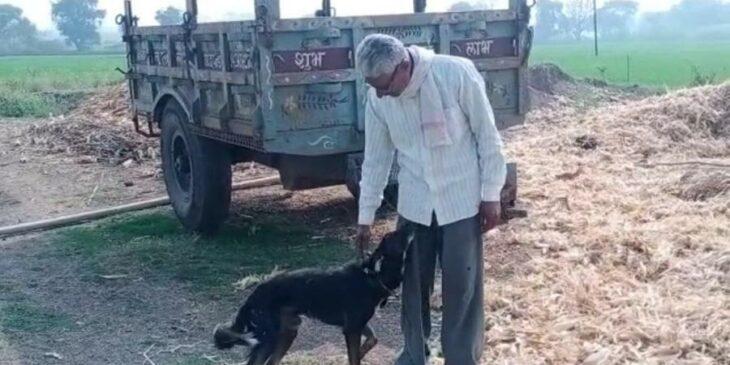 Om Narayan Verma