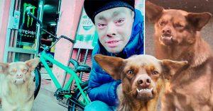 Ya encontraron al 'Chilaquil'; es de Chile, vive en las calles y está buscando quién lo adopte